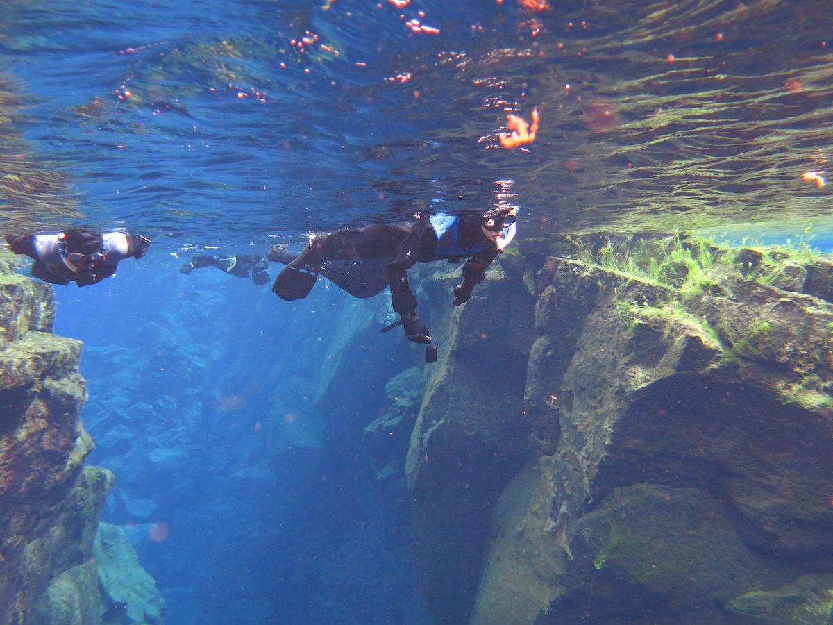 Matkalla mannerlaattojen väliin. Kuva: Jennifer Boyer // Flickr CC 2.0