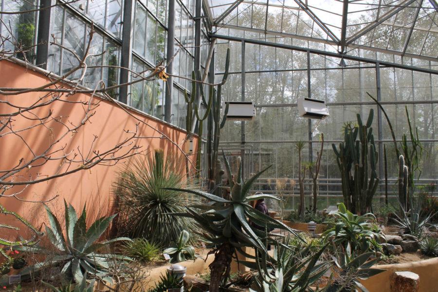 Hortus Botanicus © Jasmina Toivonen