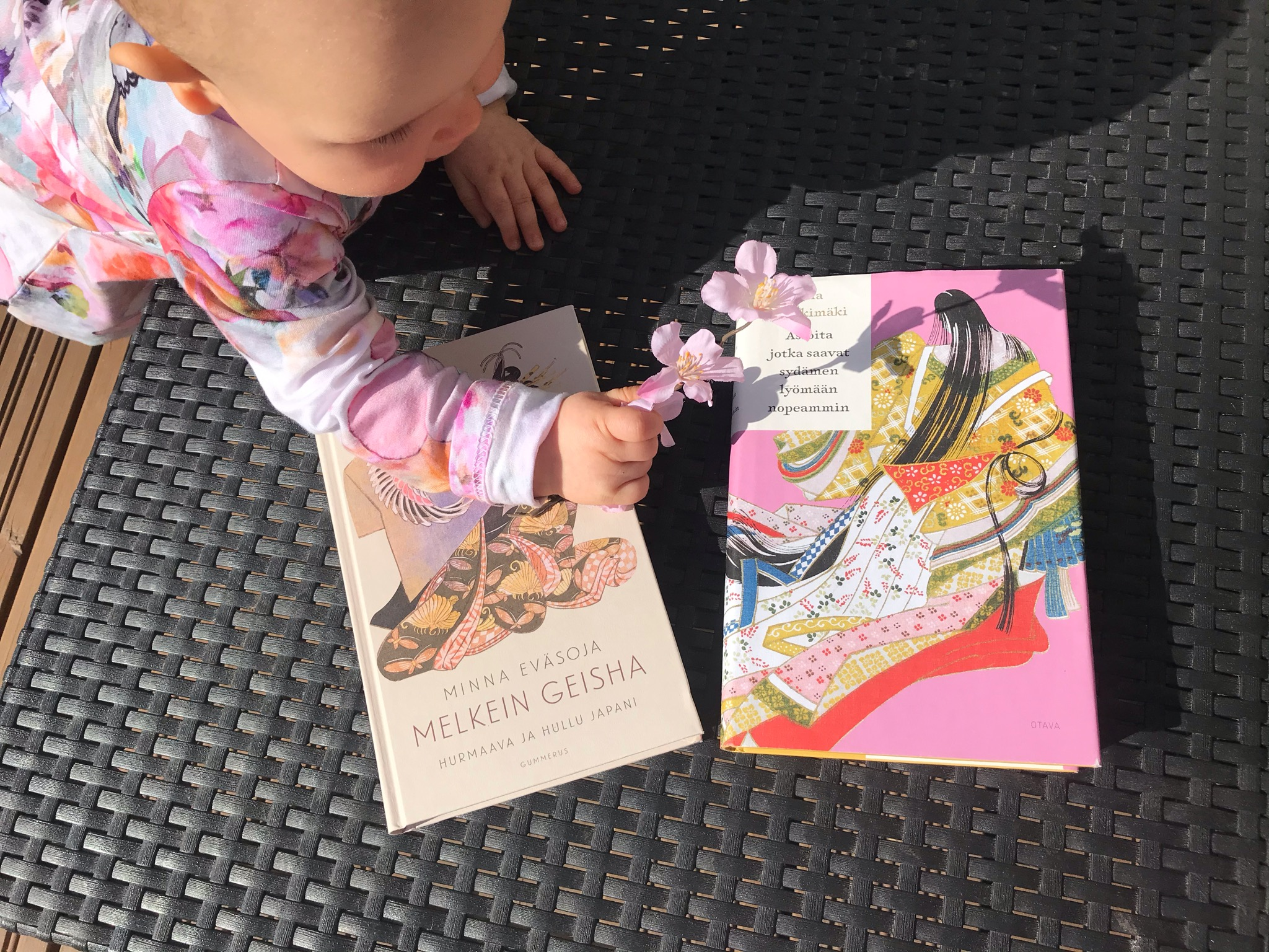 Japani-romaanien kauneutta. Kuva: Siru Valleala.