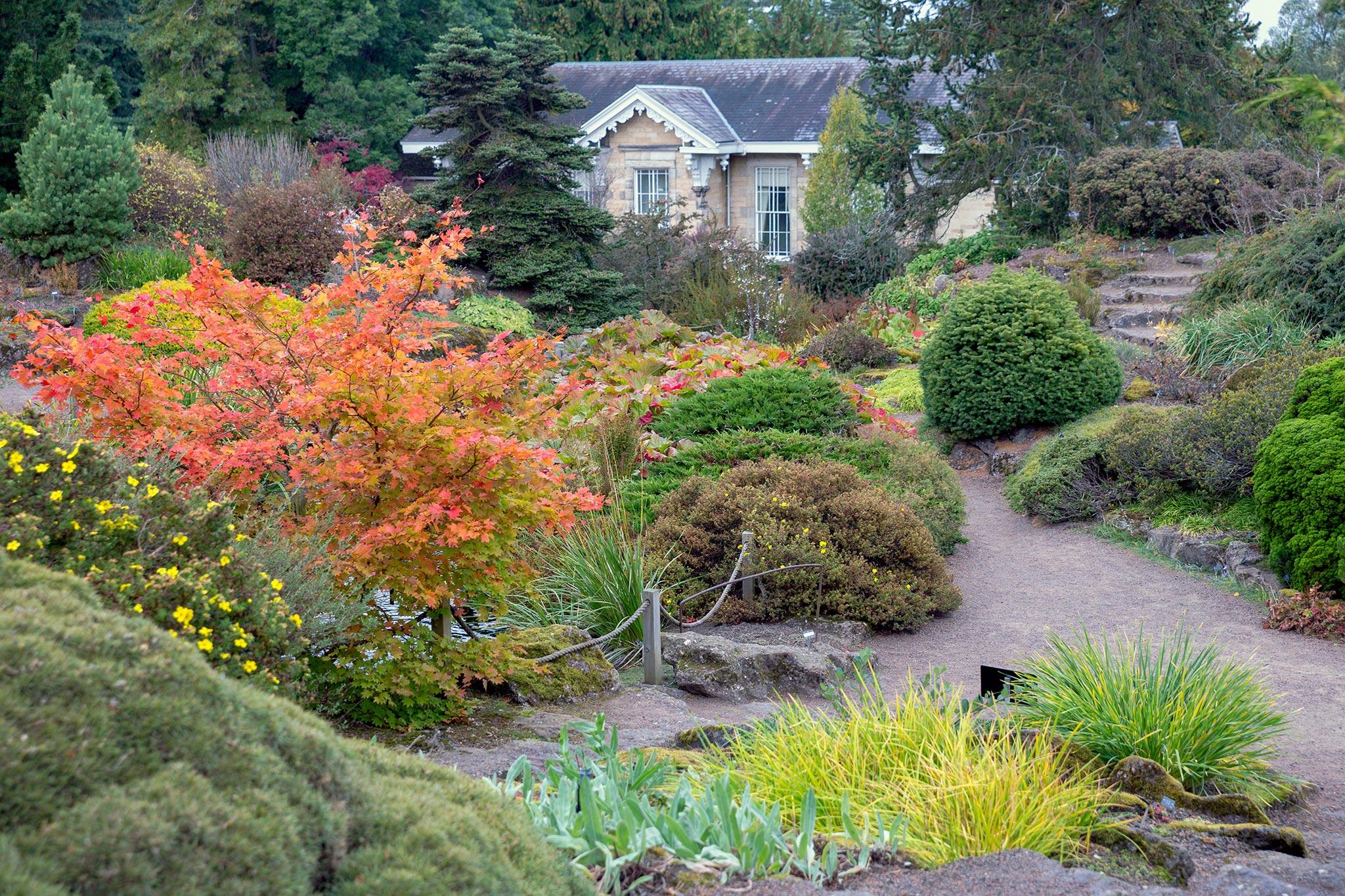 Edinburghin botaaninen © Tuulia Kolehmainen