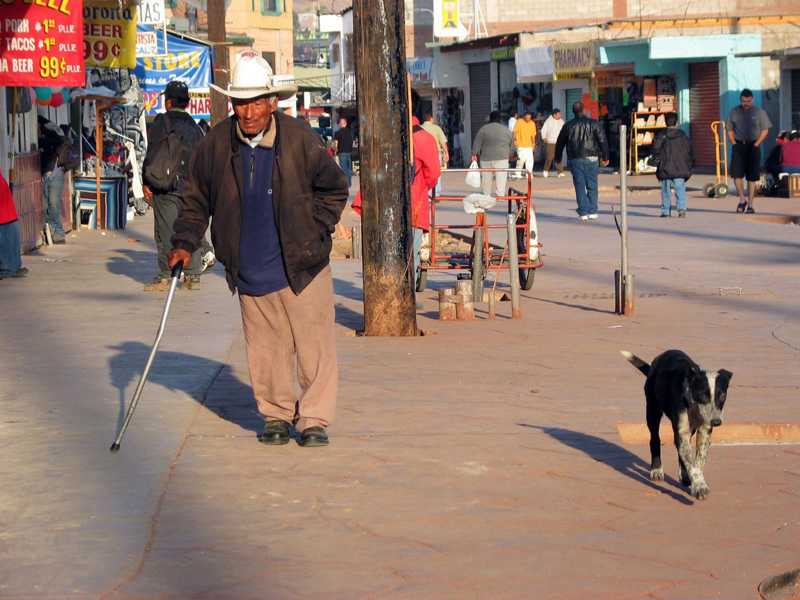 Tijuana dog. Kuva: Miika Mattila